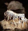 Koneprusy - Caves